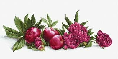 Luca-S Peonies and Red Apples