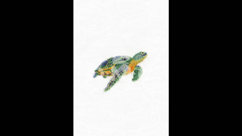 DMC Tranquil Turtle