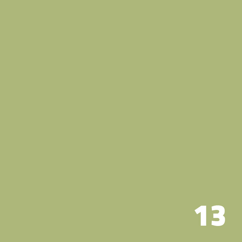13 SUPERIOR Seamless Paper 2.7m - Tropical Green