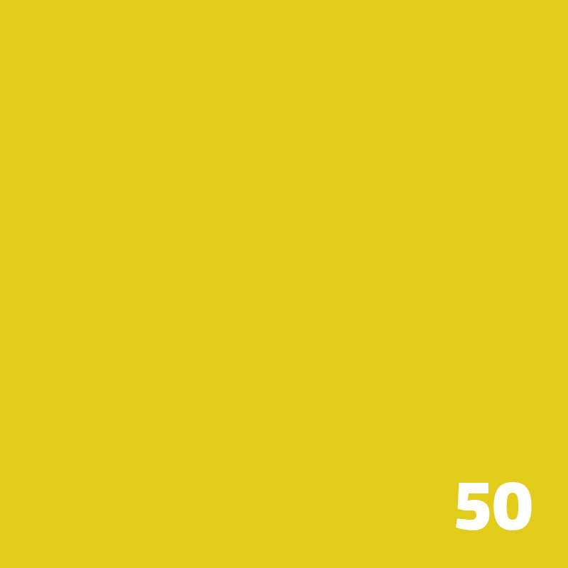 50 SUPERIOR Seamless Paper 2.7m - Aspen