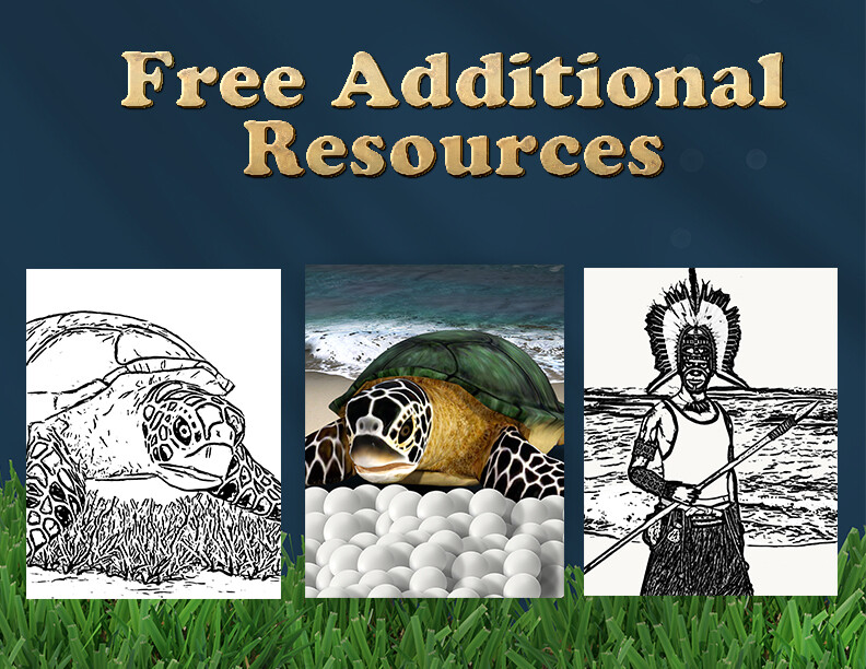 Where's The Turtle- Free Additional Resources