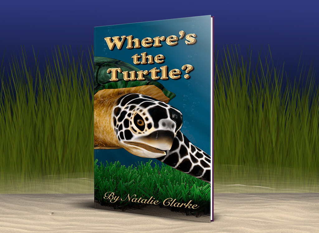 Where's the Turtle? eBook