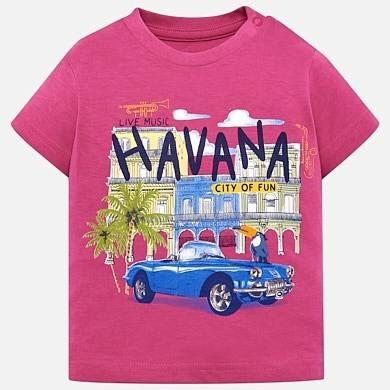 Havana T-Shirt 1026 24m