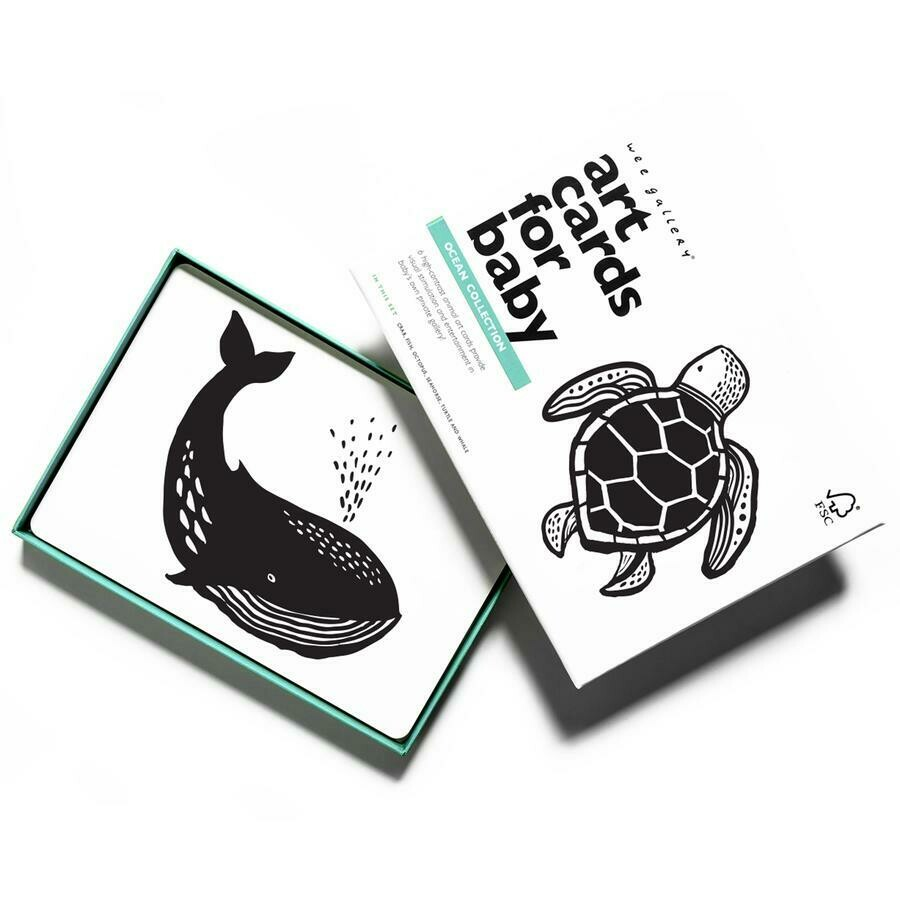 Art Cards Ocean Collection