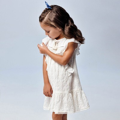 Chiffon Embroidered Dress 3944