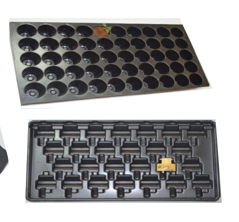 Customized Vacuum Formed Trays