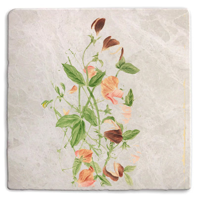 Botanical 15