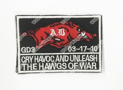 WG080 Navy SEAL The HAWGS OF WAR Patch With Velcro - Full Color