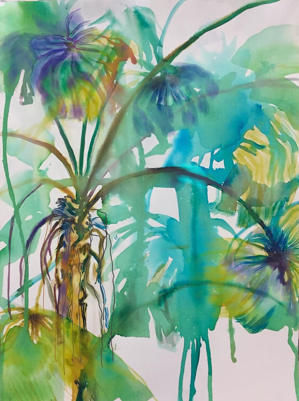 Fan Palm Forest
