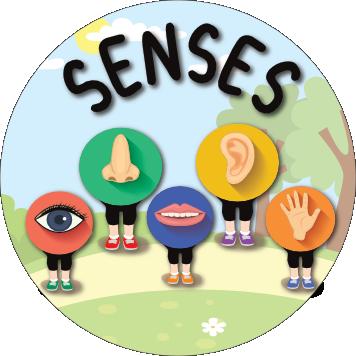 Once Off Box Theme: Exploring Senses