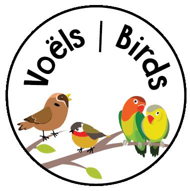 Once Off Box Theme: Birds