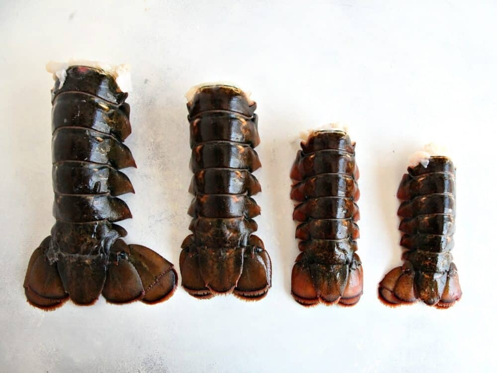 16- 26oz Maine Cold Water Lobster Tails