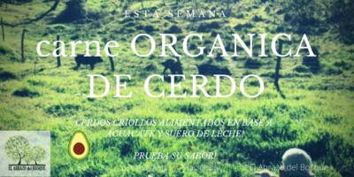 CARNE DE CERDO CRIOLLO  ($3,90/LB)