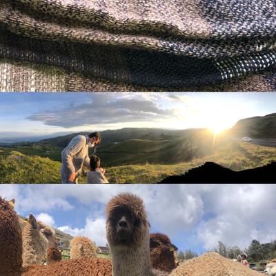 Vive la Experiencia Paqocha! Alpacas, vicuñas,Comunidad, Tejido. Pack 1-3 días/pax.