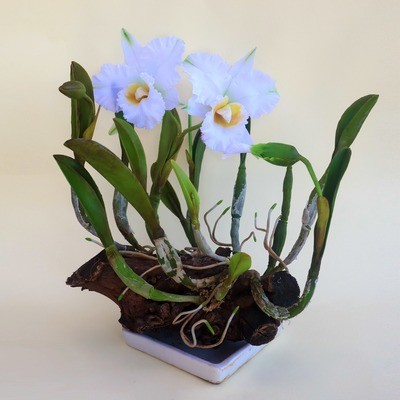 White Clay Cattleya Orchid Flower, Variant 2
