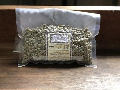 Green Coffee Arabica Sample Pack (4 - 250 Gram Samples)