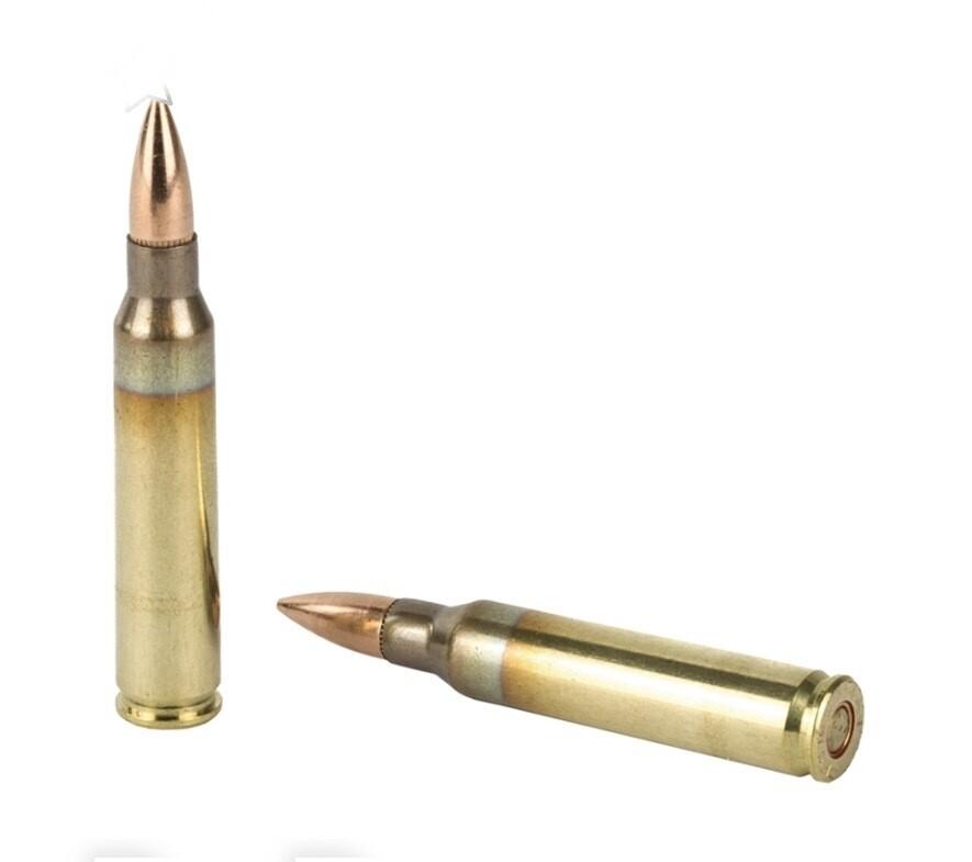 Lake City 5.56mm NATO XM193 Ammo 55 Grain FMJ 1000 Rounds Bulk