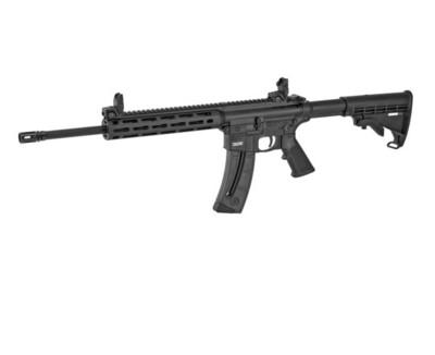 Smith & Wesson, M&P 15-22