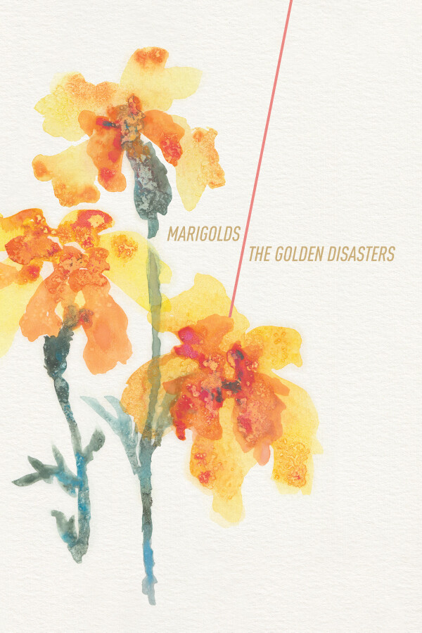 Marigolds—Forgiveness Postcard Series