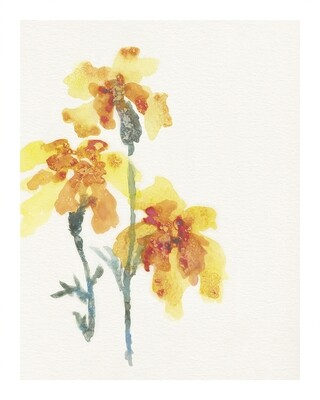 Marigolds—Forgiveness Print Series