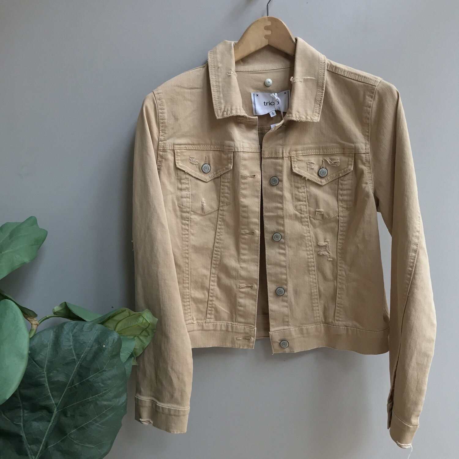 Colored Distressed Jacket