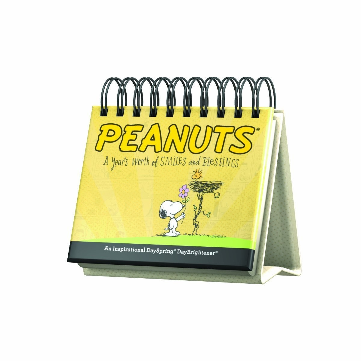 DayBrightener - Peanuts