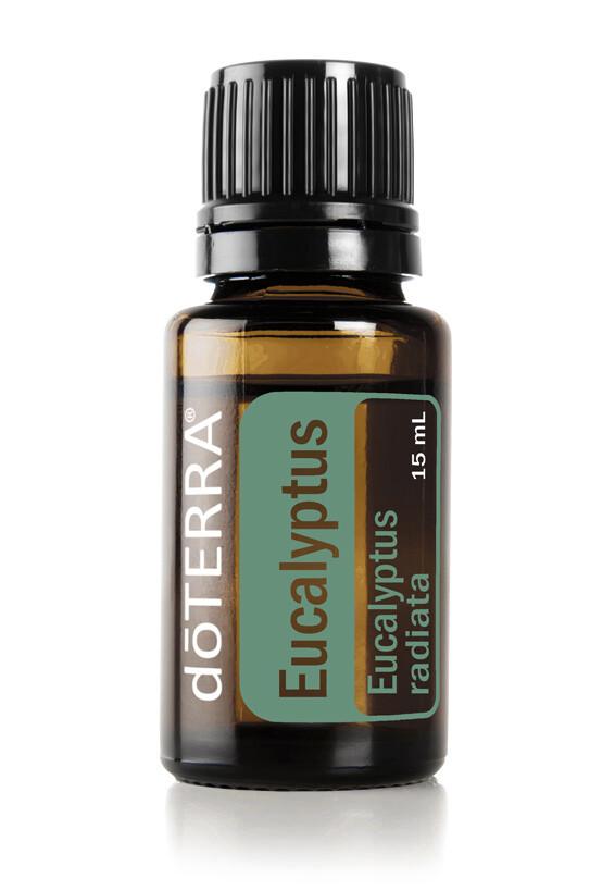 Eucalyptus -15ml