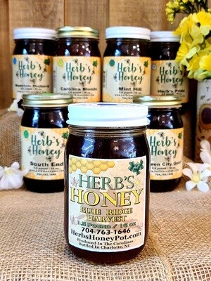 1.5 lb Blue Ridge Harvest -Herb's Honey