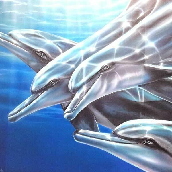 Poster: Dolphins Harmonic