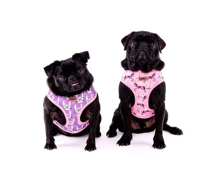 Taffy 2-in-1 Harness in Pink Pony
