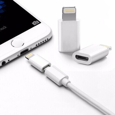 Buy 2 Pieces Lightning to Micro USB Adapter Converter