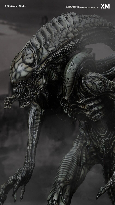 (PO) XM Studios - Alien Hive-Warrior - Black Variant