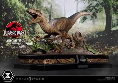 (PO) Prime 1 - Velociraptor Attack