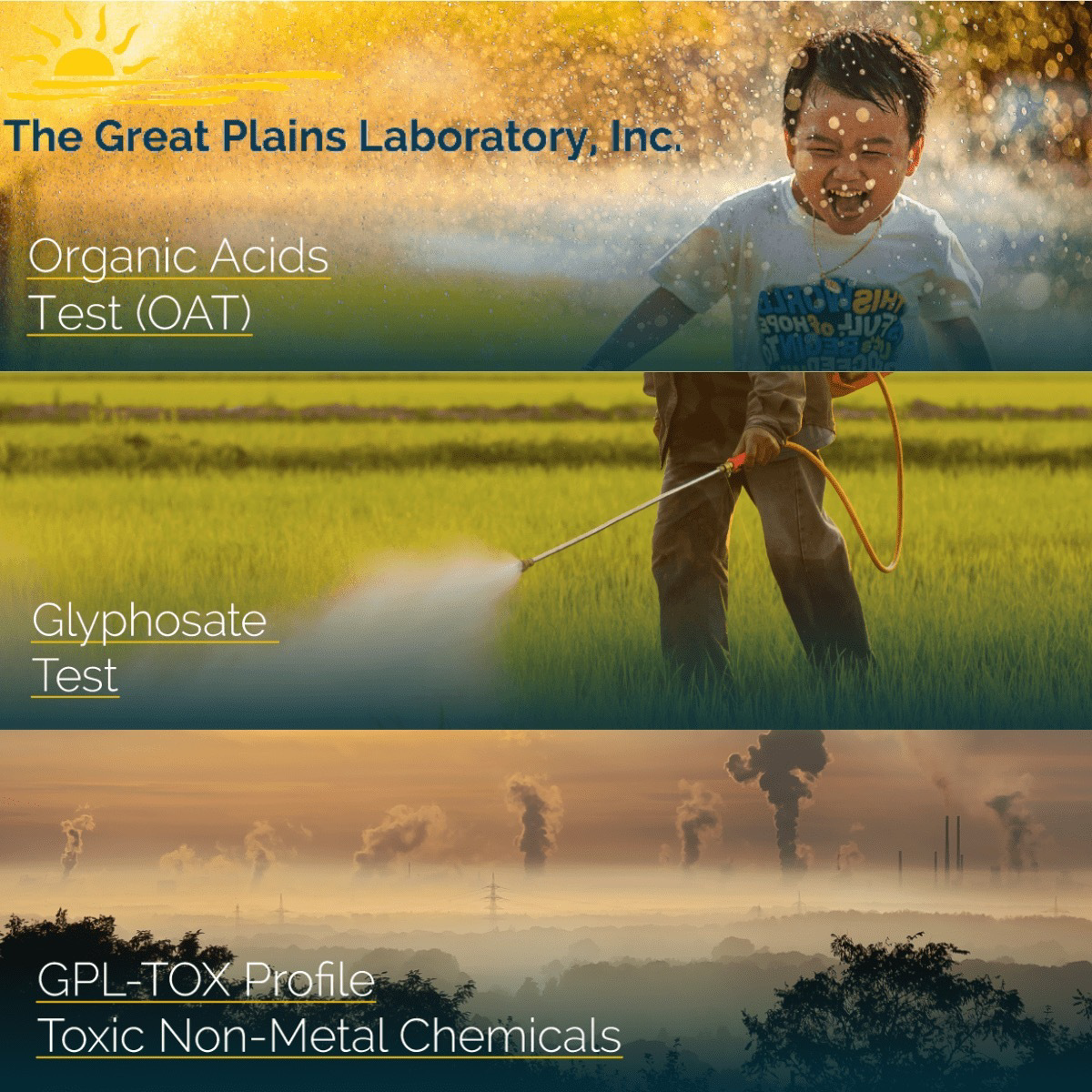 ENVIROtox Complete Panel (GPL-TOX + OAT + Glyphosate) + MycoTOX Profile (Mold Exposure) 4 tests in one USA only