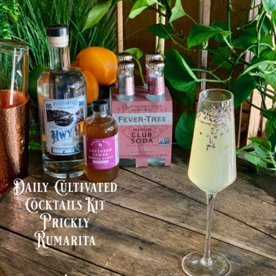 Hwy 9 Gin Cocktail Kit: Lavender Lemon Spritz