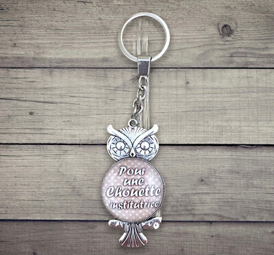 Porte-clefs cabochon pour une chouette institutrice