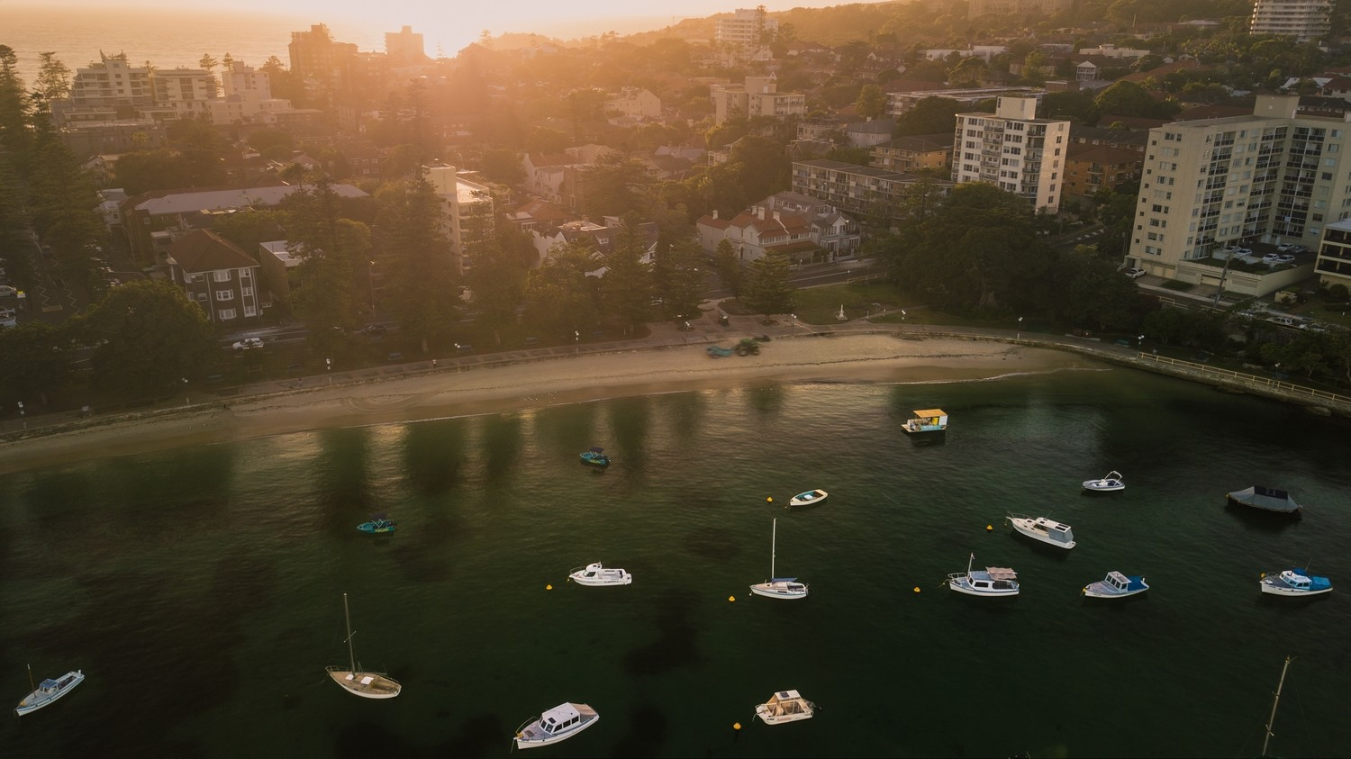 Manly Cove Print