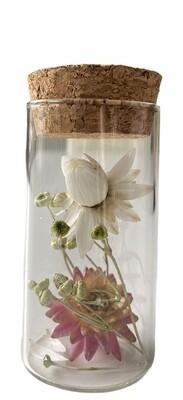 14 - Droogbloemen in glazen buisje - keuze 8