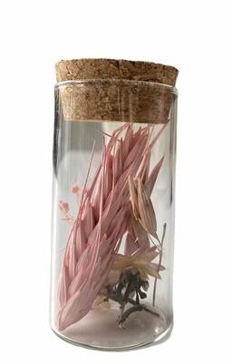 14 - Droogbloemen in glazen buisje - keuze 9