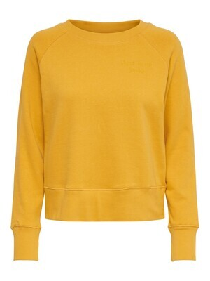 Sweater - DIANNA LIFE - okergeel