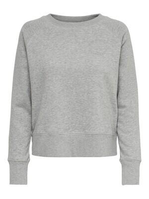 Sweater - DIANNA LIFE - lichtgrijs