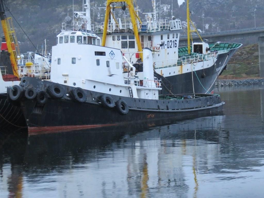 Des 2017 Taubåten Polarbjørn                                 HUGGET