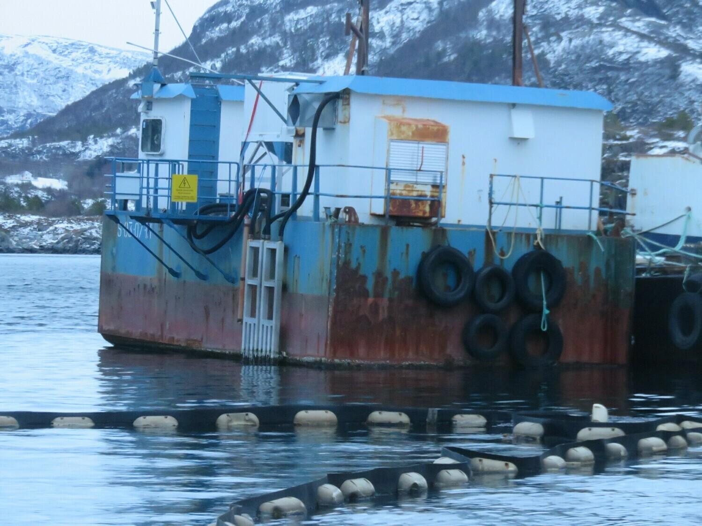 "nov 2019 ""Havhest flåten""      ankommet til hugging           HUGGET"