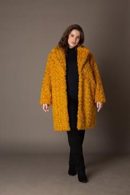 The Golden Coat