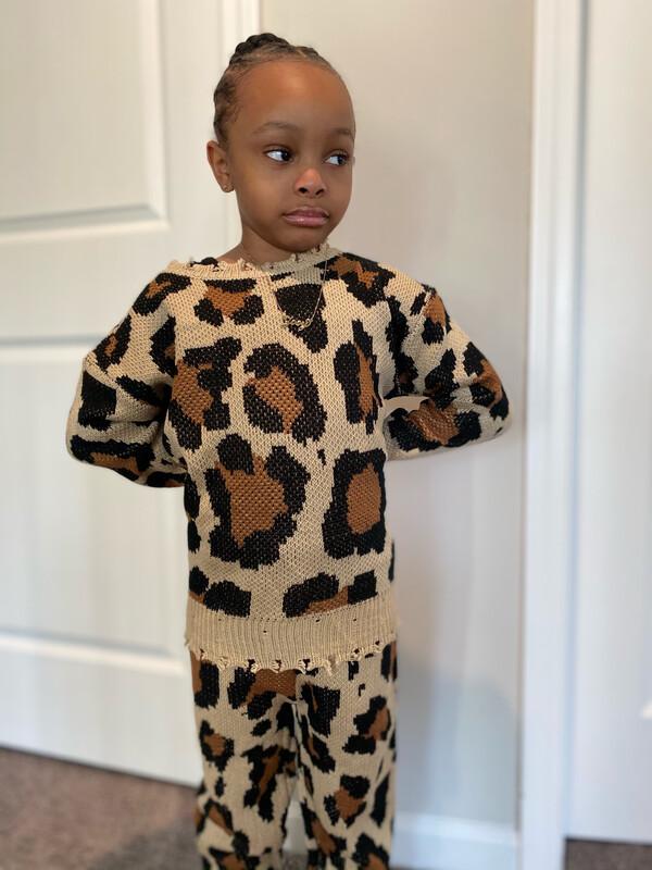 Leopard Two Piece Knit Set