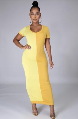 Dijoun Two Tone Dress