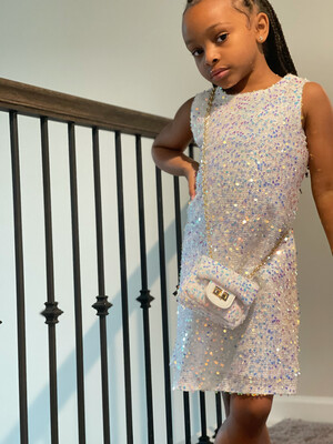 Iridescent Sparkle Dress (purse sold separately)