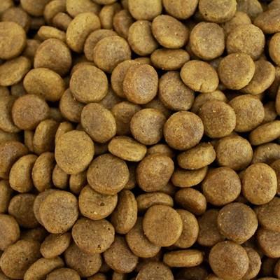 Puppy Food Free Range Turkey
