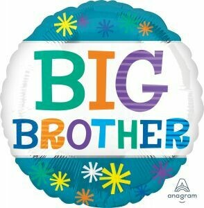 18 - TEAL BIG BROTHER