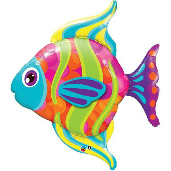 43 - TROPICAL FISH
